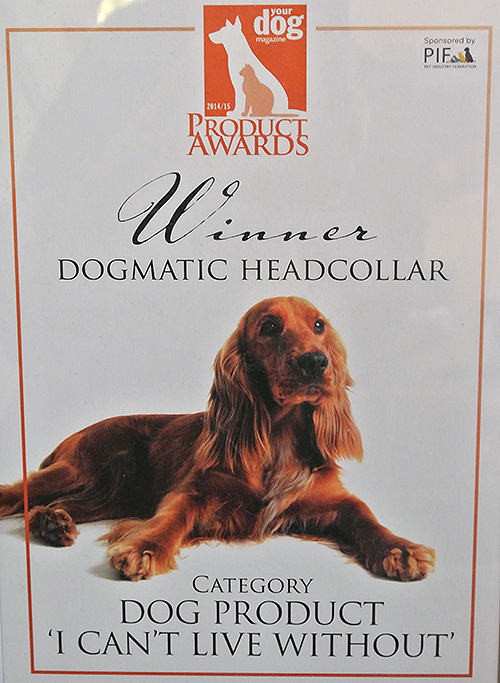 Your Dog Award certificate 2014/15